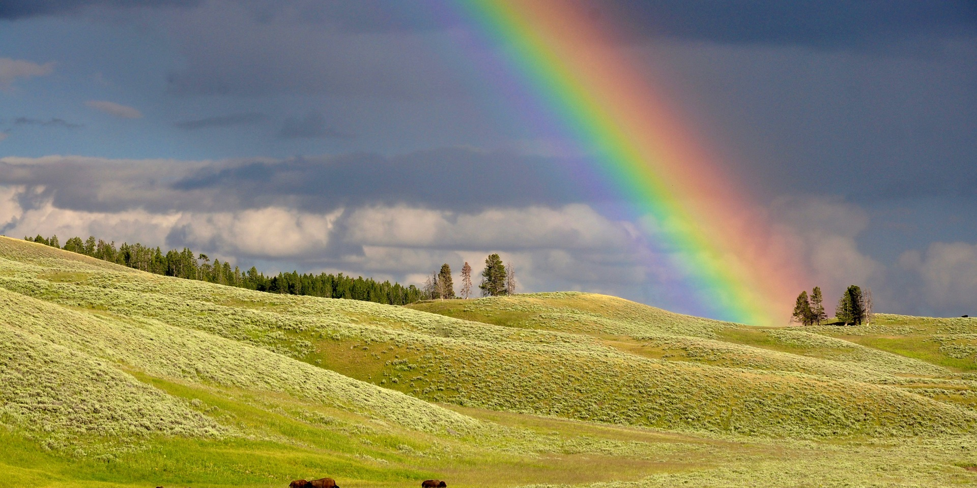 How are rainbows formed? - Met Office