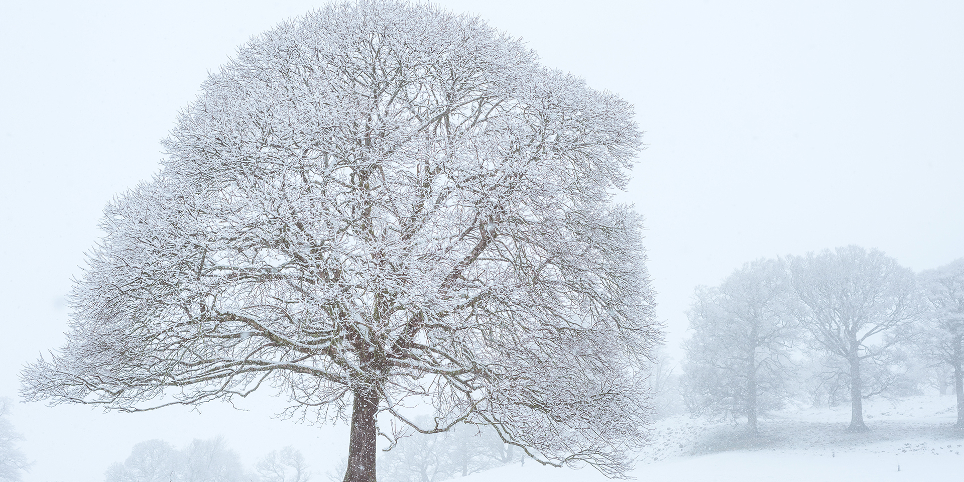 10 facts about snow met office - Met office mountain forecast ...